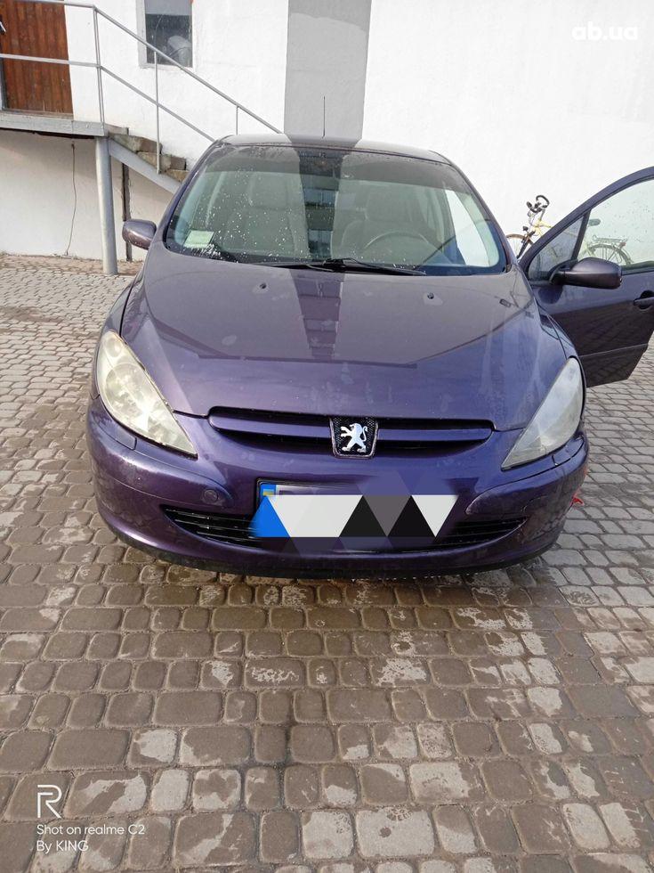 Peugeot 307 2003 фиолетовый - фото 1