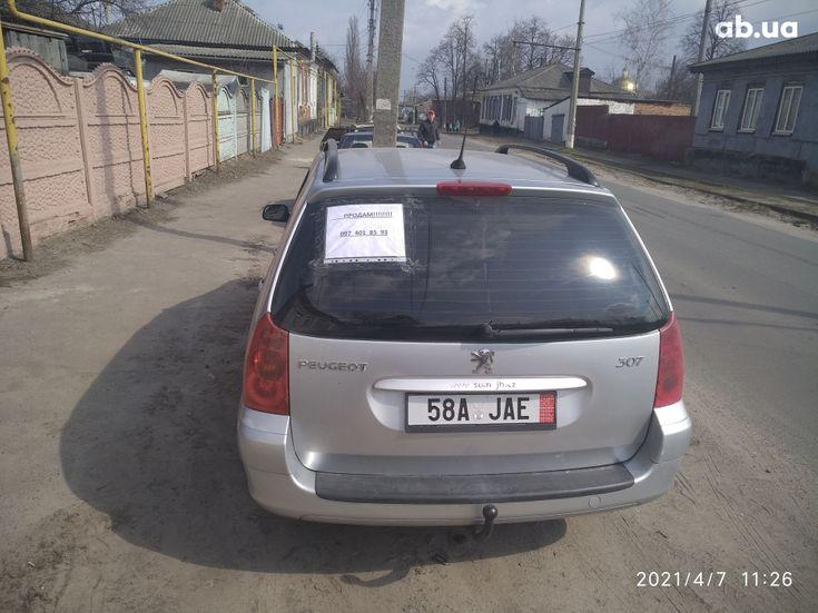 Peugeot 307 2005 серый - фото 14